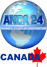 ANCA24 The News Agency of Ecological and Environmental from the Americas